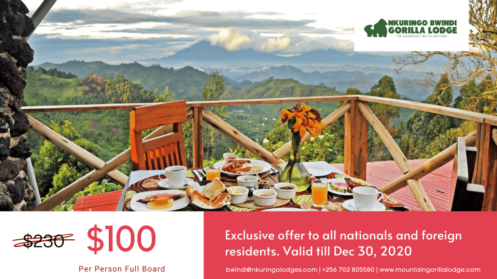 Covid offer in Bwindi Impenetrable Forest Safari Lodge, Uganda