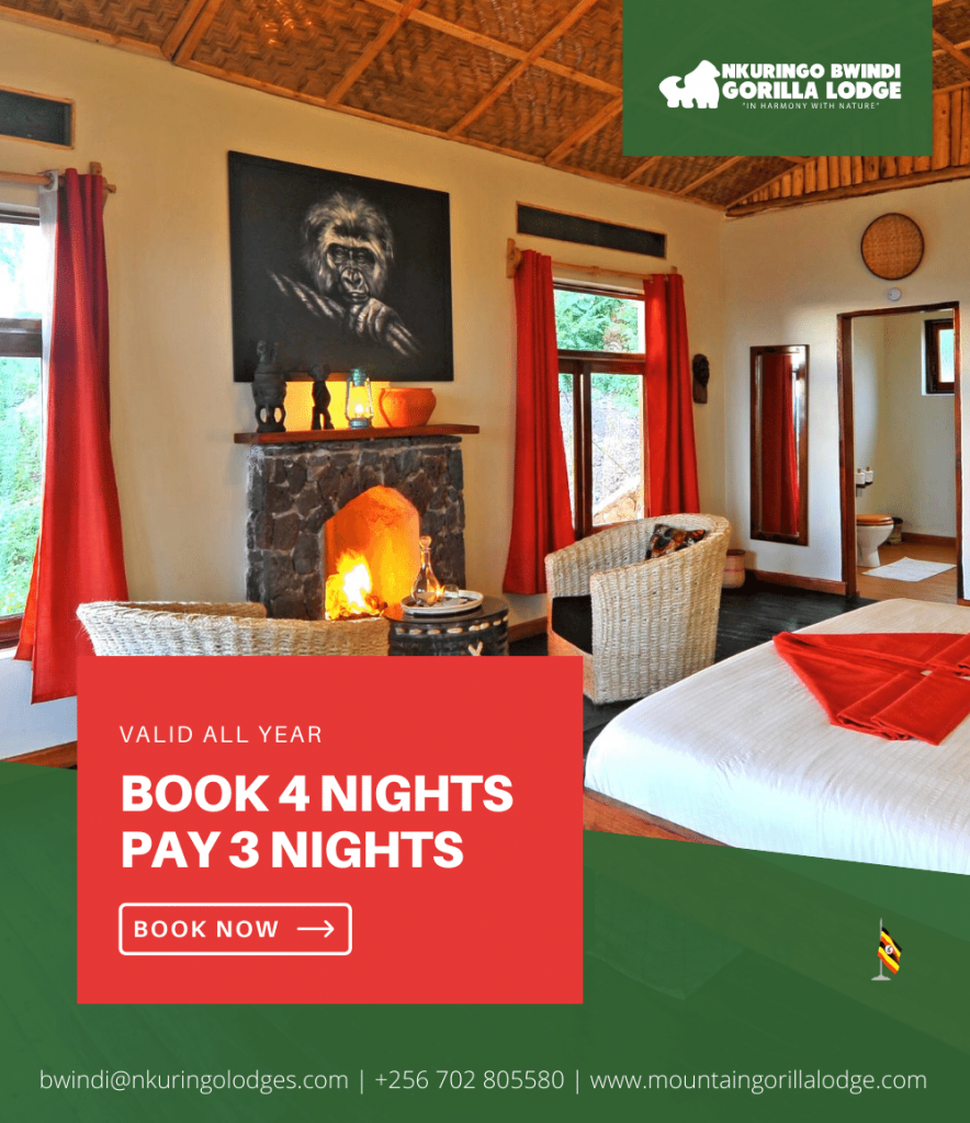 Special offers in Nkuringo