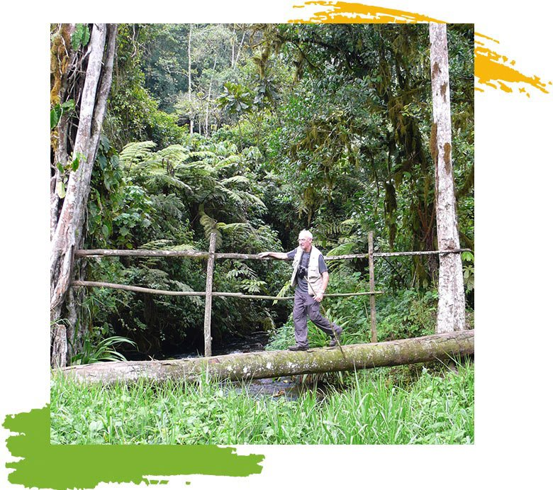 Bwindi Ivy river trail hiking