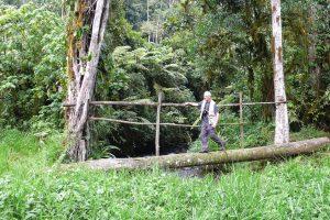 WHERE TO STAY TREKKING IN BWINDI