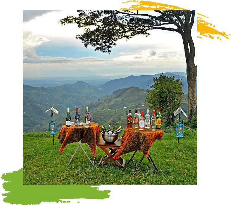 Nkuringo  Top of The World